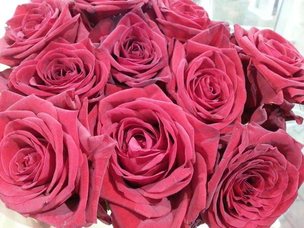 blumen und florales f r die hochzeit wie rosen calla oder tulpen g nstig online bestellen. Black Bedroom Furniture Sets. Home Design Ideas