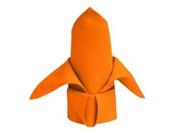 Serviette Orange..